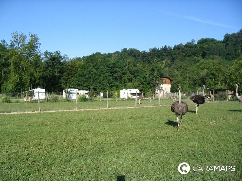 Autrucheland : area camper