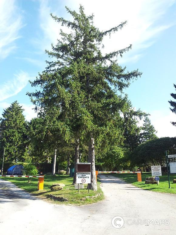 Discover Aire De Services De Saint Mamert Du Gard A Step
