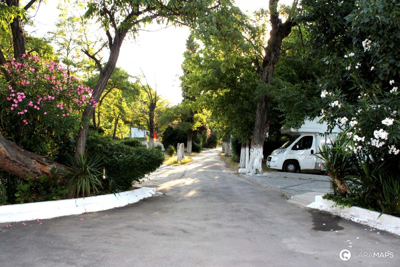 Sewer Installation Price